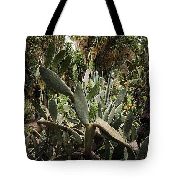 Botanic Garden Valencia Tote Bag