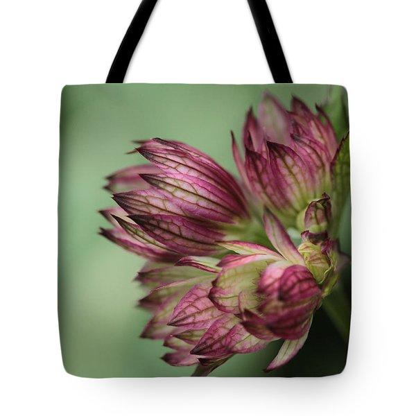 Botanica .. New Beginnings  Tote Bag