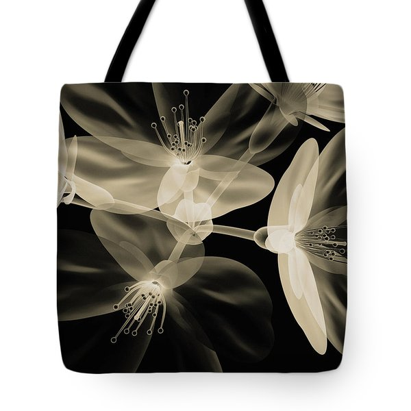 Botanical Study 4 Tote Bag by Brian Drake - Printscapes
