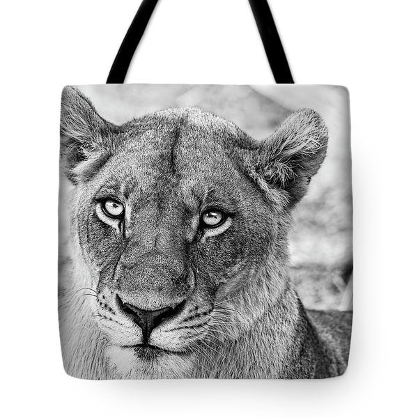 Botswana  Lioness In Black And White Tote Bag
