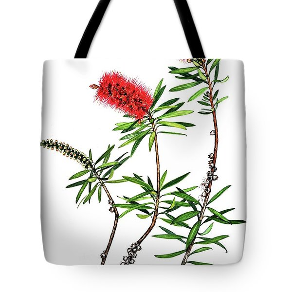 Tote Bag featuring the painting Bottle Brush by Heidi Kriel