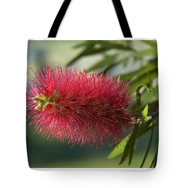 Tote Bag featuring the photograph Bottle Brush by R Thomas Berner