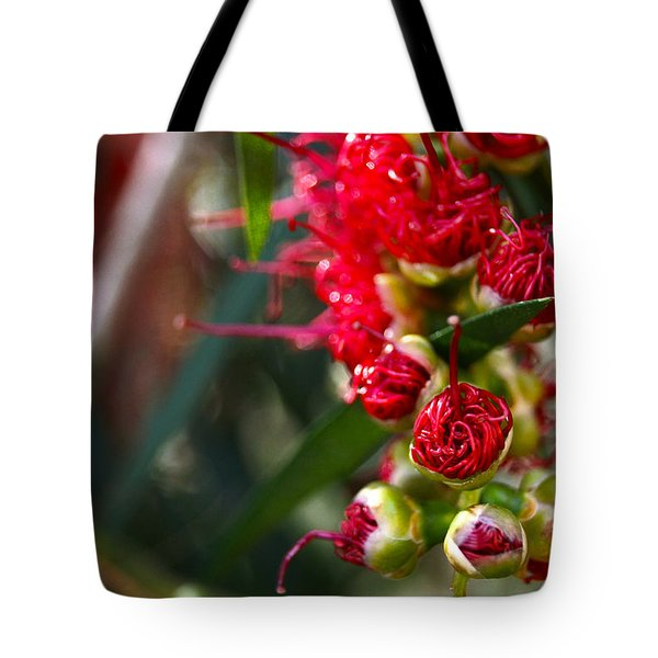 Bottlebrush Tote Bag