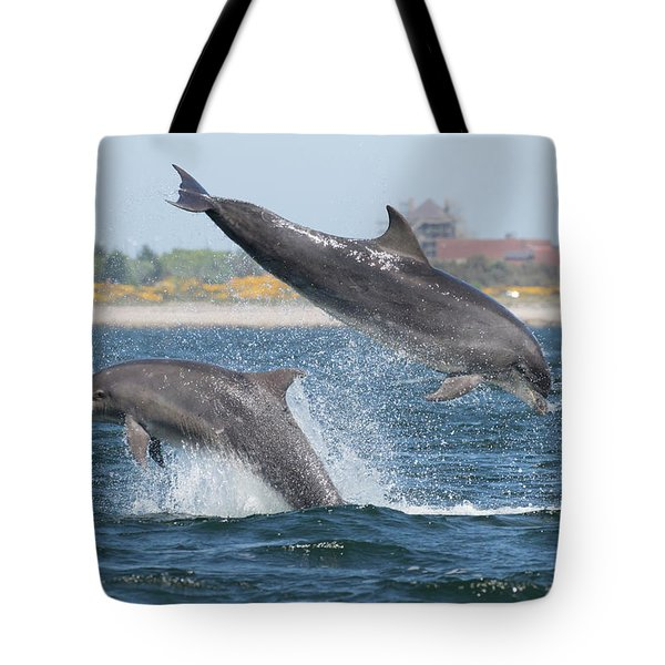 Tote Bag featuring the photograph Bottlenose Dolphin - Moray Firth Scotland #48 by Karen Van Der Zijden