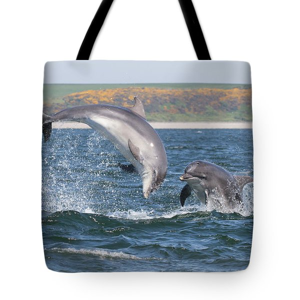 Tote Bag featuring the photograph Bottlenose Dolphin - Moray Firth Scotland #49 by Karen Van Der Zijden