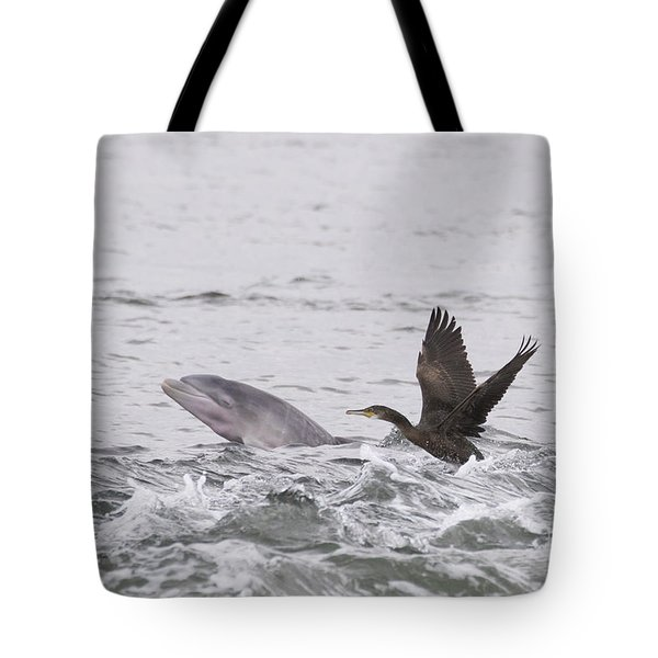 Baby Bottlenose Dolphin - Scotland #10 Tote Bag