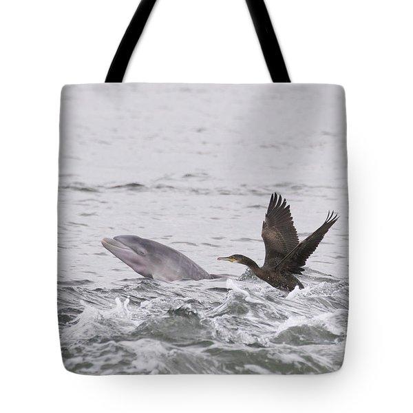 Baby Bottlenose Dolphin - Scotland #10 Tote Bag