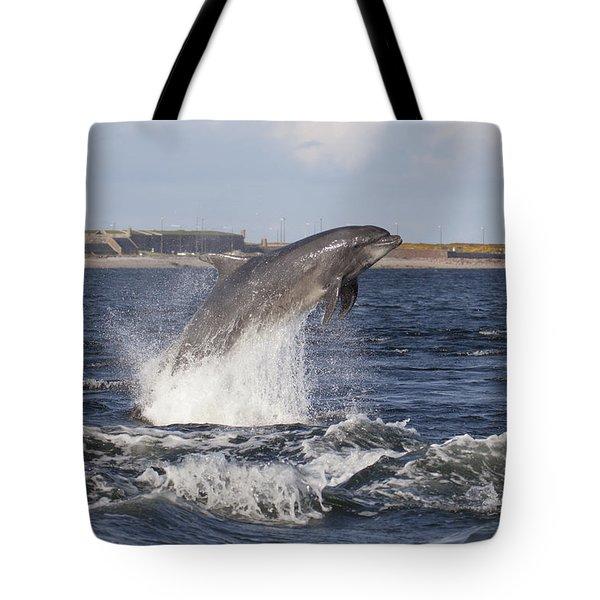 Bottlenose Dolphin - Scotland  #26 Tote Bag
