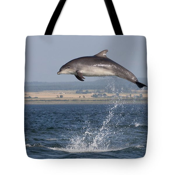 High Jump - Bottlenose Dolphin  - Scotland #42 Tote Bag
