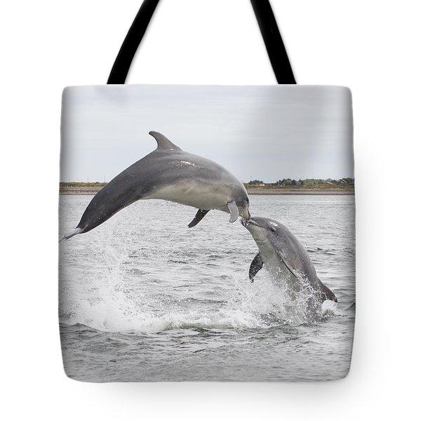 Bottlenose Dolphins - Scotland #1 Tote Bag