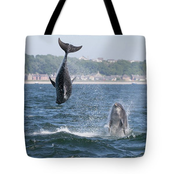 Tote Bag featuring the photograph Bottlenose Dolphins - Moray Firth Scotland #46 by Karen Van Der Zijden