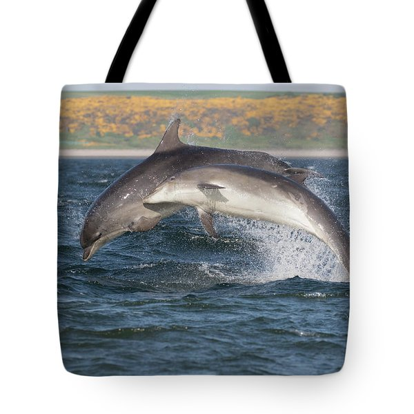Tote Bag featuring the photograph Bottlenose Dolphins - Moray Firth Scotland #47 by Karen Van Der Zijden