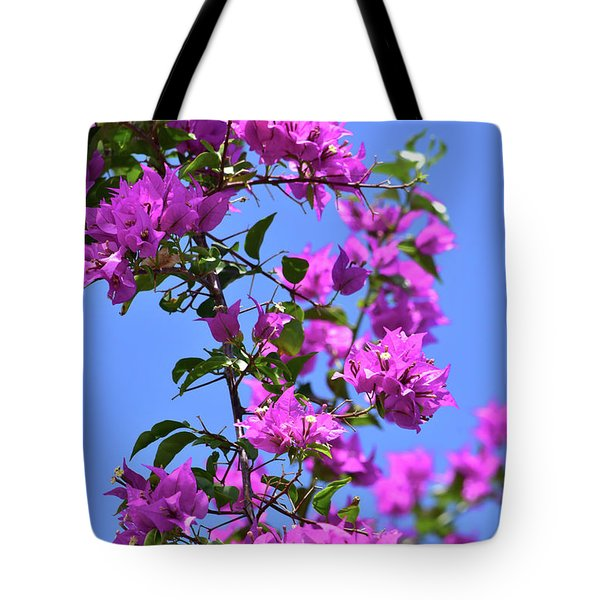 Bougainvillea And Sky Tote Bag