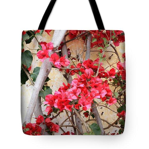 Bougainvillea Tote Bag by Carol Groenen