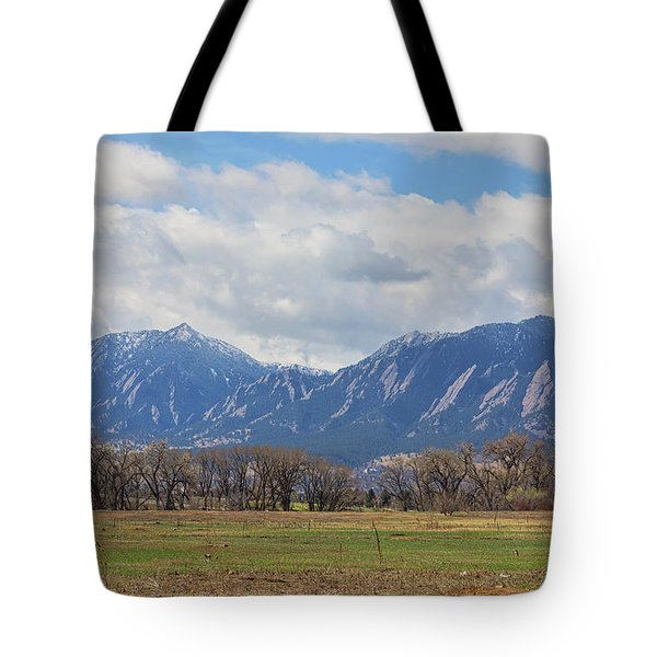 Tote Bag featuring the photograph Boulder Colorado Prairie Dog View  by James BO Insogna