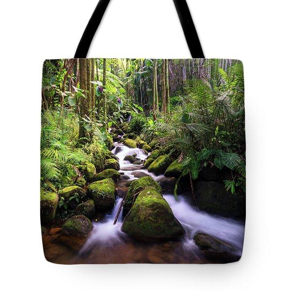 Boulder Creek Falls Tote Bag