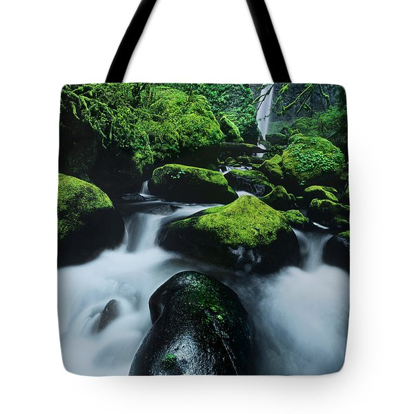 Tote Bag featuring the photograph Boulder Elowah Falls Columbia River Gorge Nsa Oregon by Dave Welling