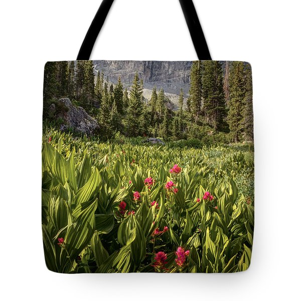 Boulders And Wildflowers In Albion Basin Tote Bag by Utah Images