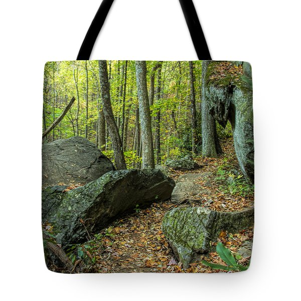Tote Bag featuring the photograph Boulders On The Bear Hair Gap Trail by Barbara Bowen