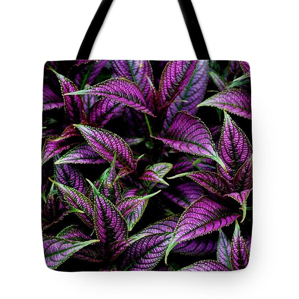 Bouquet Of Persian Shield Tote Bag