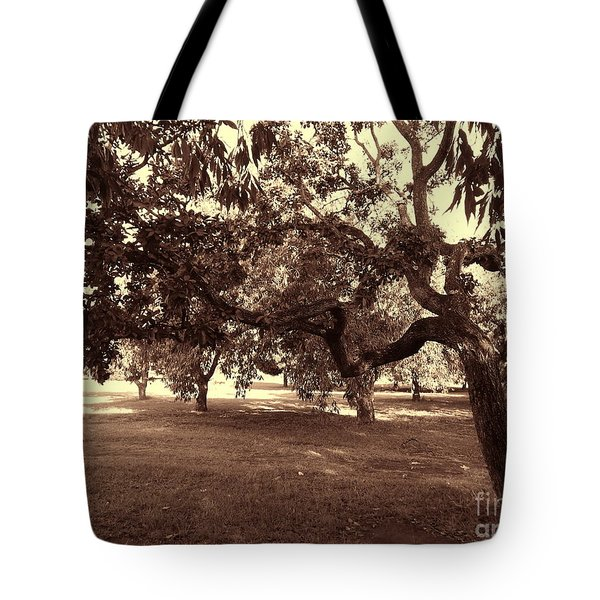 Tote Bag featuring the photograph Bovary by Beto Machado