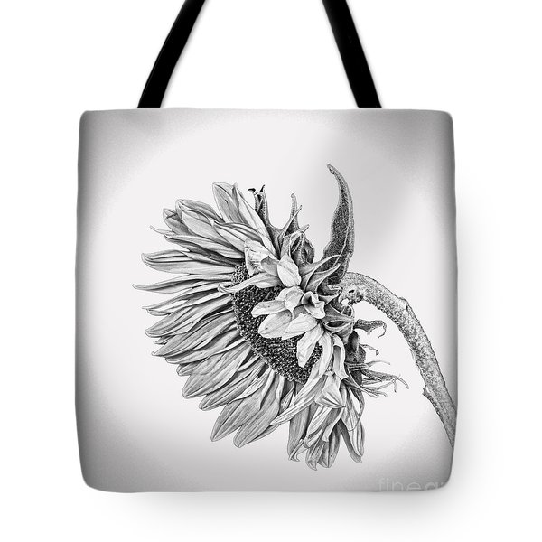 Bowed Sunflower Bw Tote Bag