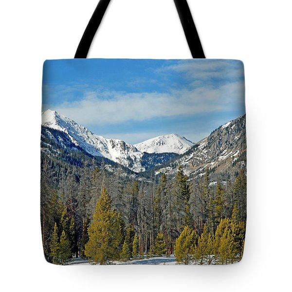 Bowen Mountain In Winter Tote Bag