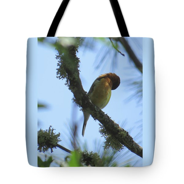 Bird Of Pray - Images From The Garden Tote Bag