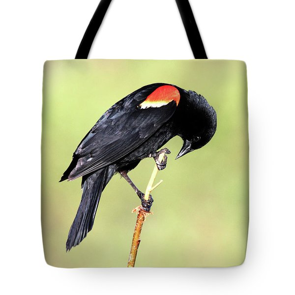 Tote Bag featuring the photograph Bowing by Shane Bechler