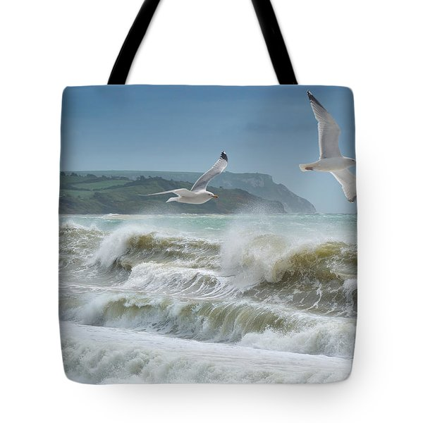 Bowleaze Cove Tote Bag
