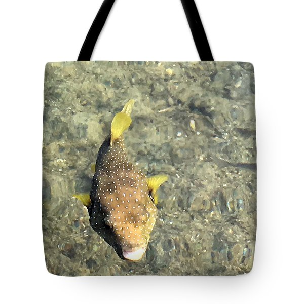 Tote Bag featuring the photograph Box Fish - 1 by Karen Nicholson