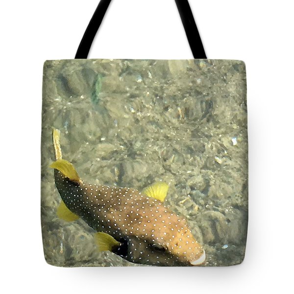 Box Fish - 3 Tote Bag by Karen Nicholson
