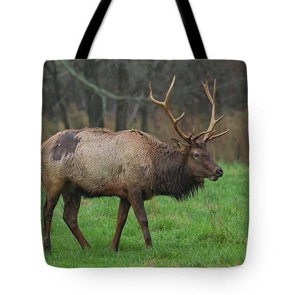 Boxley Elk Tote Bag