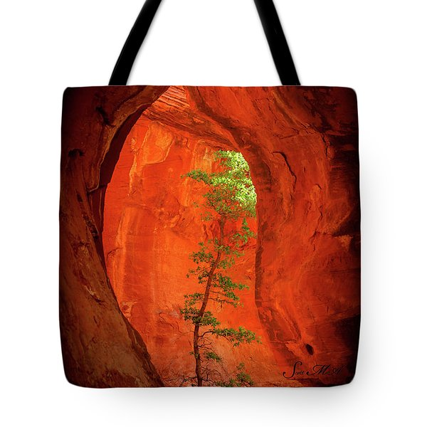 Boynton Canyon 04-343 Tote Bag