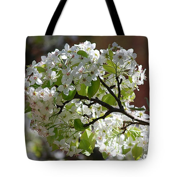 Tote Bag featuring the photograph Bradford Pear Blossoms 20120402_114a by Tina Hopkins