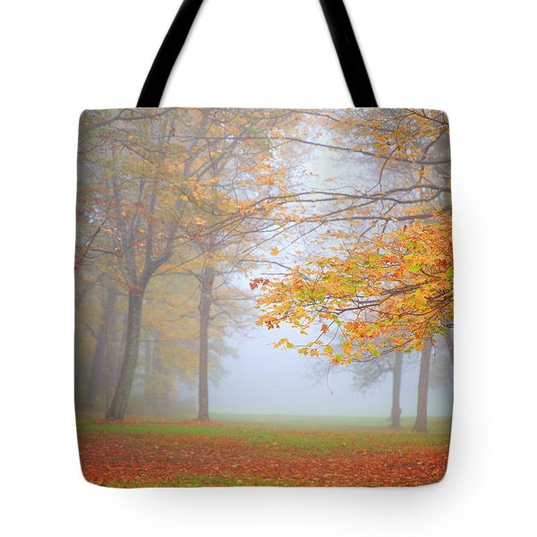 Bradys Run Park Tote Bag