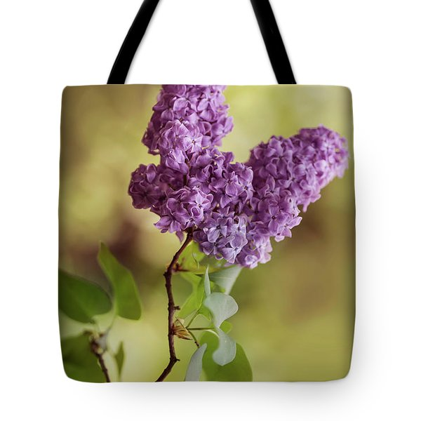 Branch Of Fresh Violet Lilac Tote Bag