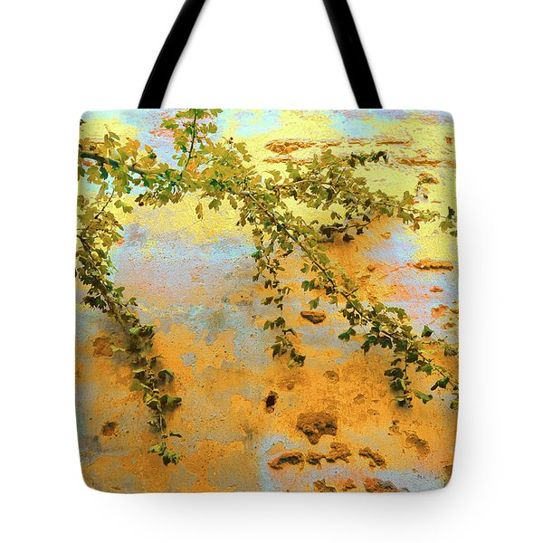 Tote Bag featuring the photograph Branch On Wall by Menega Sabidussi