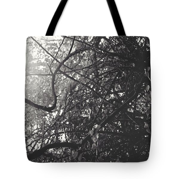 Branches Tote Bag by Sarah Boyd