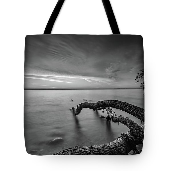 Branching Out - Bw Tote Bag