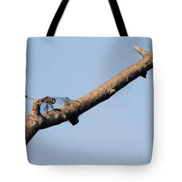 Branching Out Tote Bag by Karol Livote
