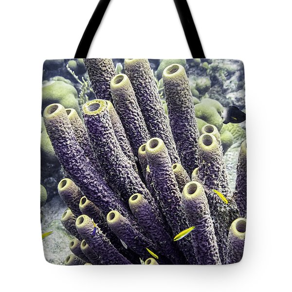 Tote Bag featuring the photograph Branching Tube Sponge by Perla Copernik