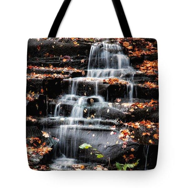 Brandywine Falls In Autumn Tote Bag