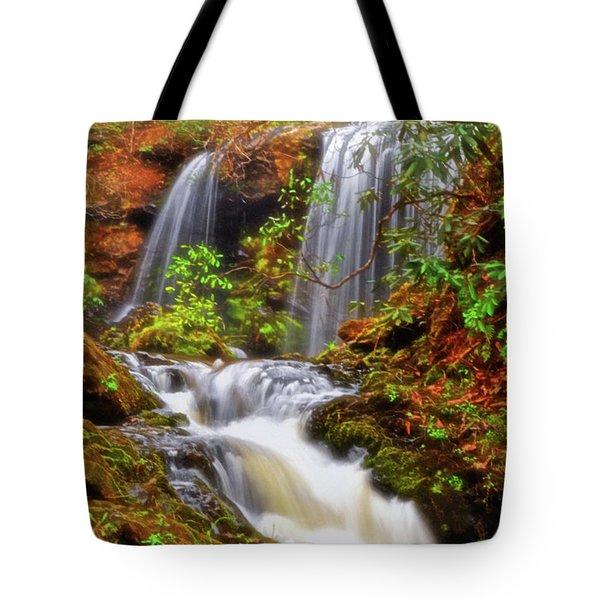 Brasstown Falls 013 Tote Bag