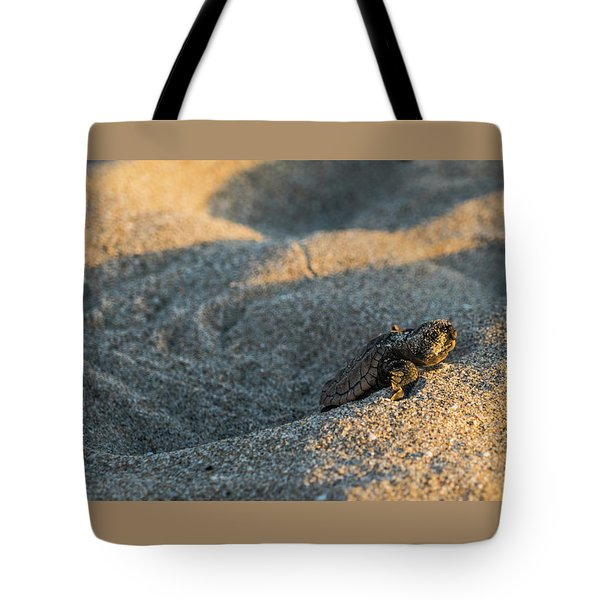 Brave Beginnings Sea Turtle Hatchling Delray Beach Florida Tote Bag
