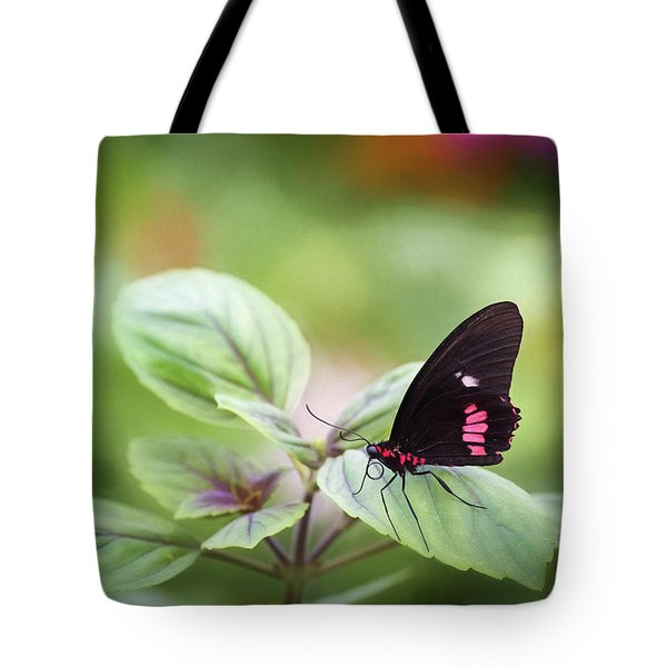 Brave Butterfly  Tote Bag