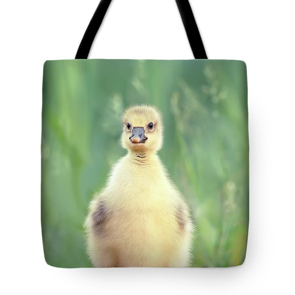 Brave New Baby - Gosling Ready To Conquer The World Tote Bag