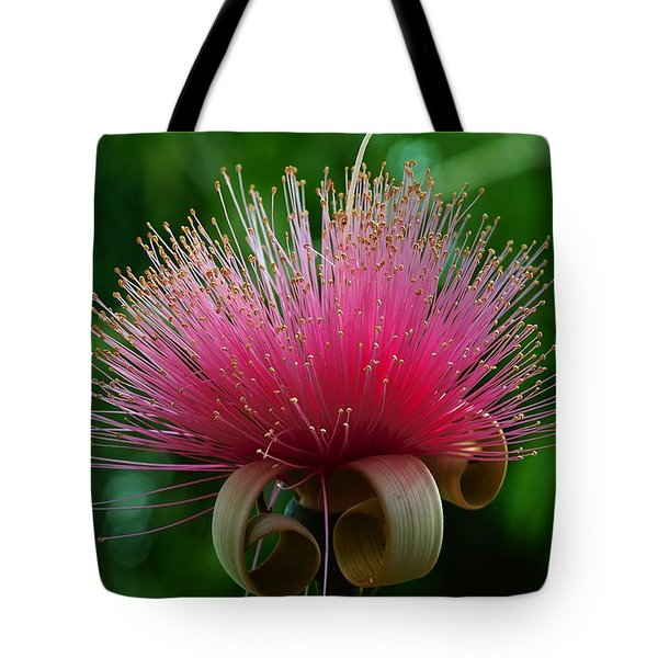Brazilian Barbers Brush Tote Bag