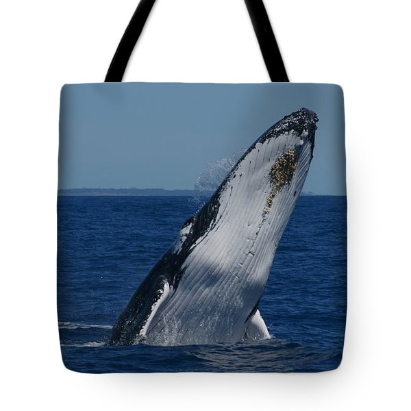 Tote Bag featuring the photograph Breaching Humpback Whale by Gary Crockett