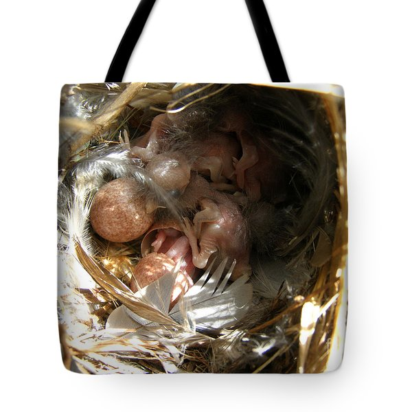 Tote Bag featuring the photograph Break Free - House Wren by Angie Rea